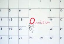 Come calcolare i giorni fertili e i tempi dell'ovulazione