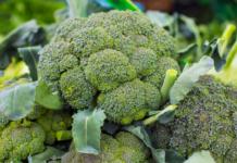 Come pulire, lavare e lessare correttamente i broccoli
